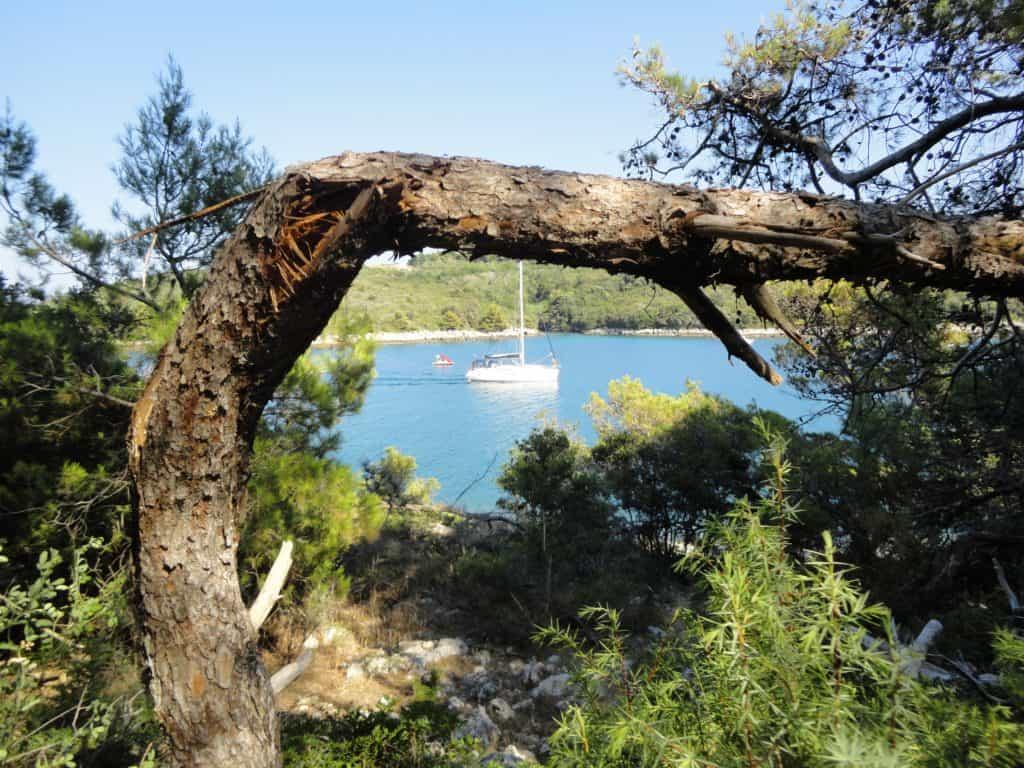 Oplevelser fra Istrien
